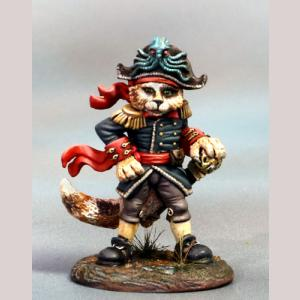 Calico Pirate Cat