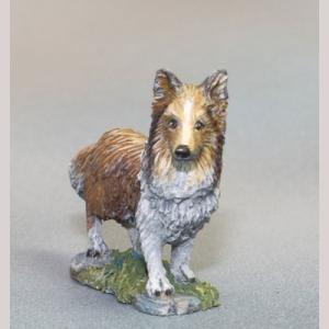 Sheltie Dog - 2 Pack